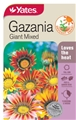 SEED FLOWER GAZANIA GIANT MIXED