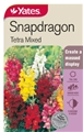 SEED FLOWER SNAPDRAGON TETRA MIX
