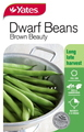 SEED BEAN BROWN BEAUTY DWARF