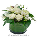 Sympathy Bowl Arrangement