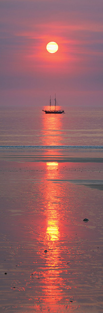 Sunset 'Willie'