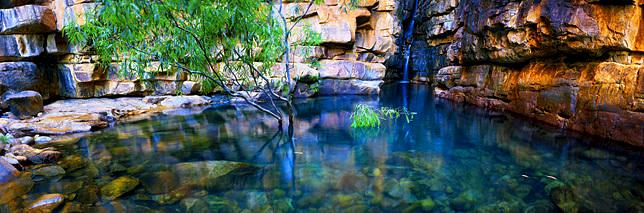 One Tree Creek