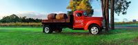 'Red Truck' - Island Brook Estate