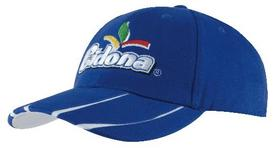 'Headwear Professionals' Brushed Heavy Cotton with Laminated Two Tone Peak