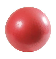 Pro-Fit Exercise Ball