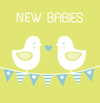 New Babies Birds