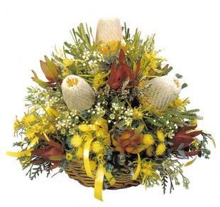 Banksia basket