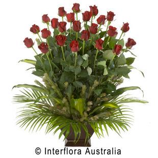 Supreme Roses