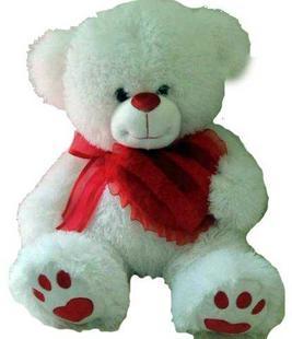 Cara Bear