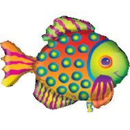 Tropical Fish Supershape